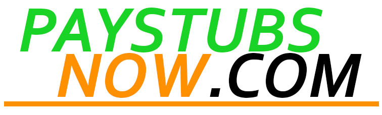 Build Your Own Pay Stub Online at Paystubsnow.com